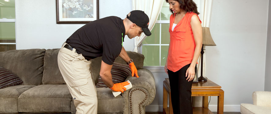 Elizabethtown, KY carpet upholstery cleaning